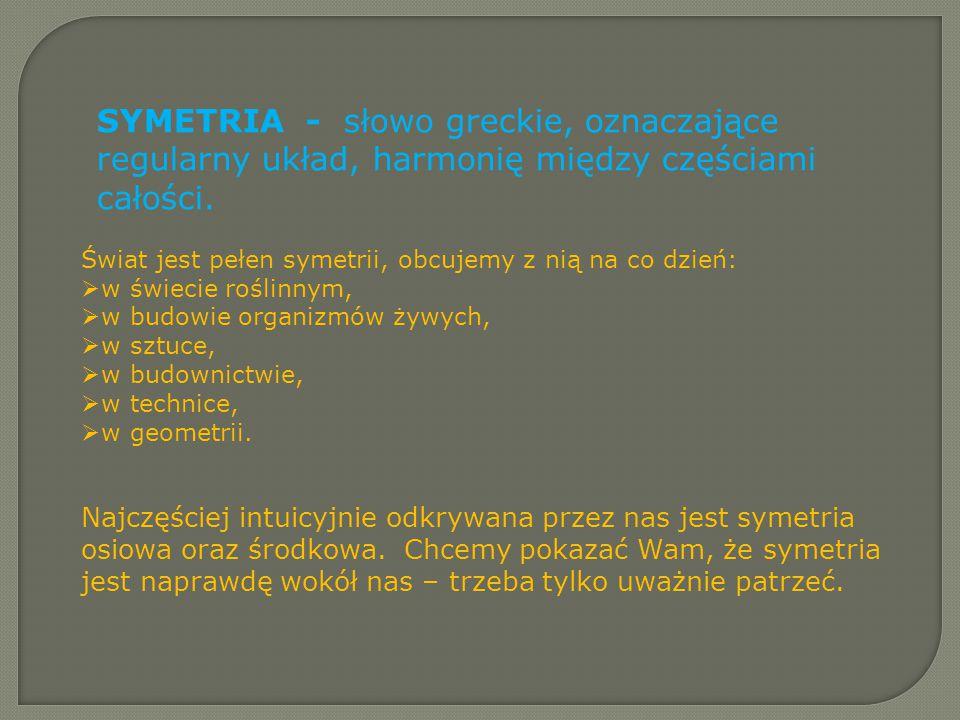 SYMETRIA - słowo greckie, oznaczające regularny układ, harmonię między częściami całości. Świat jest pełen symetrii, obcujemy z nią na co dzień:  w ś
