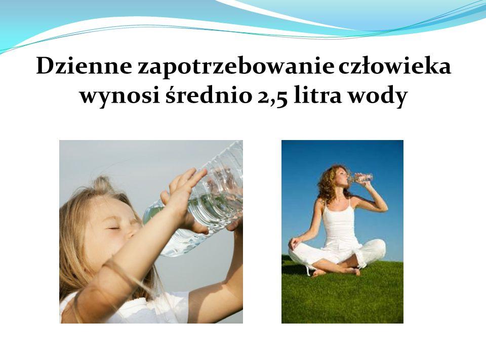 Dzienne zapotrzebowanie człowieka wynosi średnio 2,5 litra wody