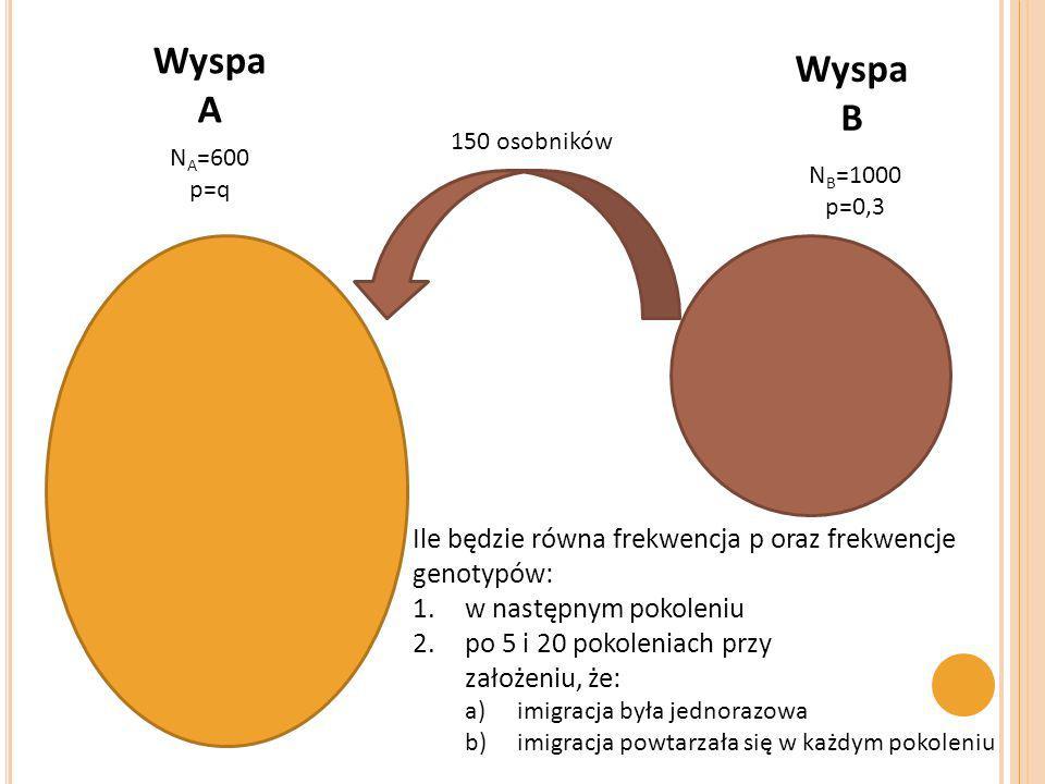N A =600 p=q 150 osobników N B =1000 p=0,3 Wyspa A Ile będzie równa frekwencja p oraz frekwencje genotypów: 1.w następnym pokoleniu 2.po 5 i 20 pokole