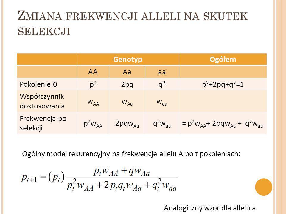 Z MIANA FREKWENCJI ALLELI NA SKUTEK SELEKCJI GenotypOgółem AAAaaa Pokolenie 0p2p2 2pqq2q2 p 2 +2pq+q 2 =1 Współczynnik dostosowania w AA w Aa w aa Fre