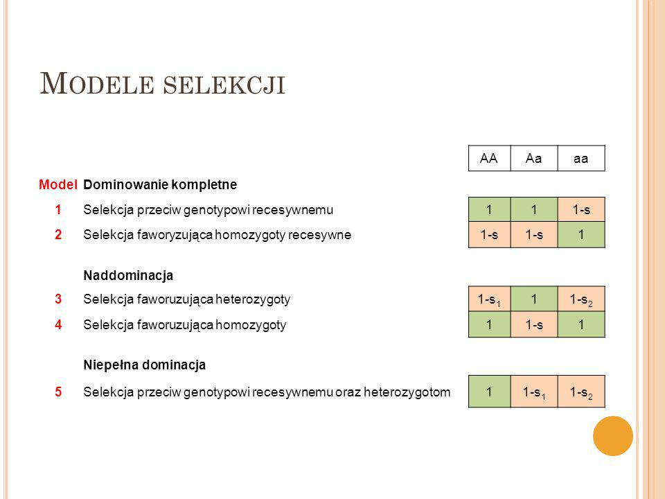 M ODELE SELEKCJI AAAaaa ModelDominowanie kompletne 1Selekcja przeciw genotypowi recesywnemu111-s 2Selekcja faworyzująca homozygoty recesywne1-s 1 Nadd