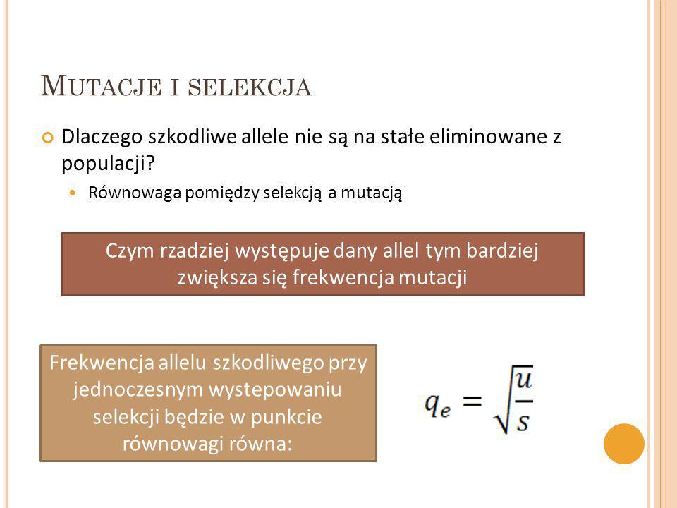 M UTACJE I SELEKCJA Dlaczego szkodliwe allele nie są na stałe eliminowane z populacji? Równowaga pomiędzy selekcją a mutacją Czym rzadziej występuje d