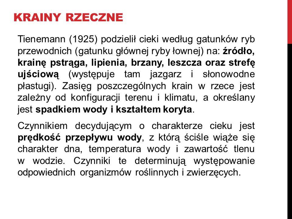 KRAINY RZECZNE Tienemann (1925) podzielił cieki według gatunków ryb przewodnich (gatunku głównej ryby łownej) na: źródło, krainę pstrąga, lipienia, br