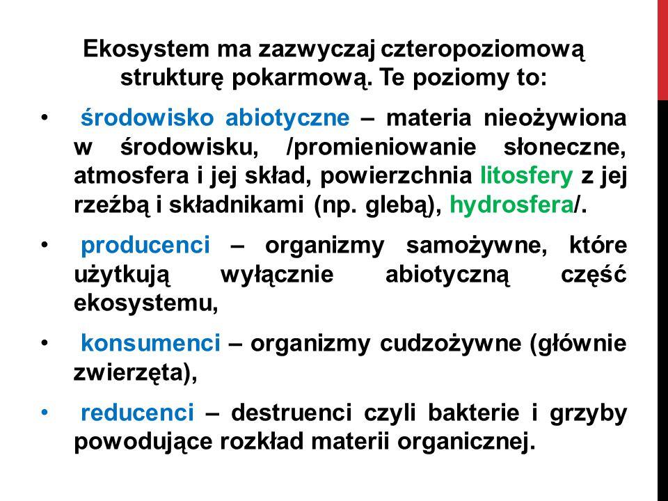 Ekosystem ma zazwyczaj czteropoziomową strukturę pokarmową. Te poziomy to: środowisko abiotyczne – materia nieożywiona w środowisku, /promieniowanie s