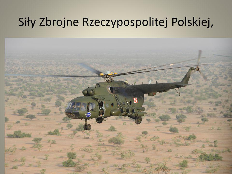Siły Zbrojne Rzeczypospolitej Polskiej, Żołnierzem zawodowym może być osoba posiadająca obywatelstwo polskie, o nieposzlakowanej opinii, której wierność dla Rzeczypospolitej Polskiej nie budzi wątpliwości, posiadająca odpowiednie kwalifikacje oraz zdolność fizyczną i psychiczną do pełnienia zawodowej służby wojskowej.