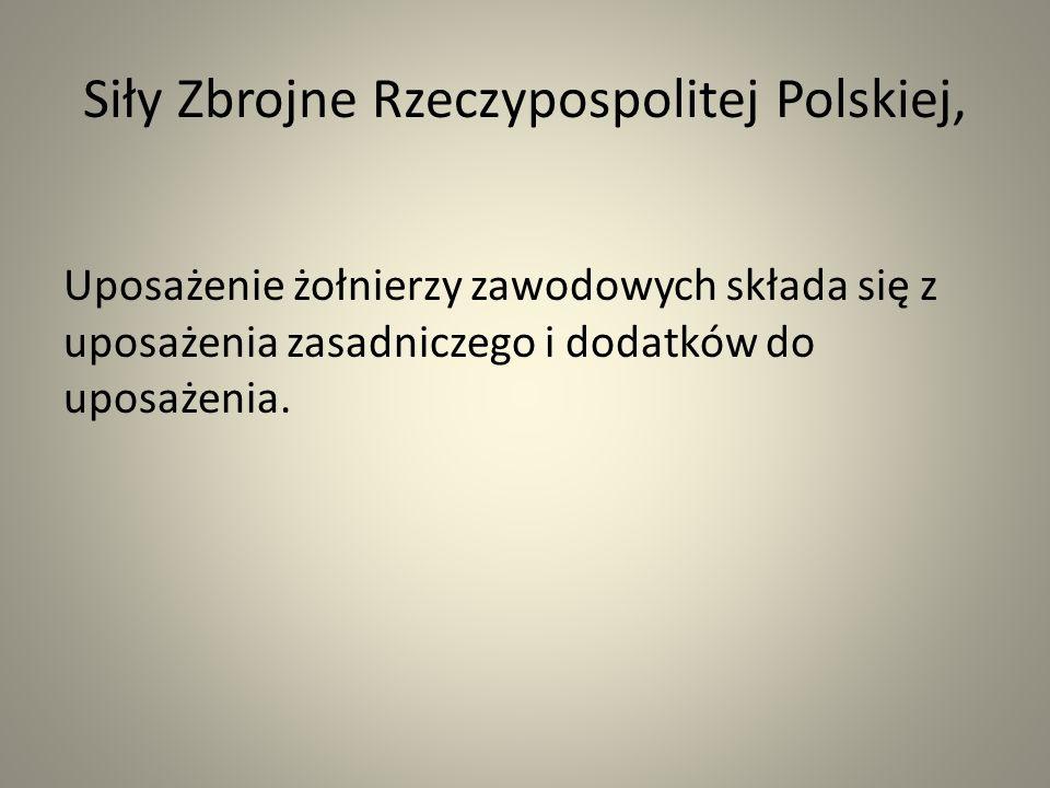 Siły Zbrojne Rzeczypospolitej Polskiej, Uposażenie żołnierzy zawodowych składa się z uposażenia zasadniczego i dodatków do uposażenia.