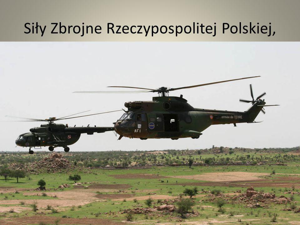Siły Zbrojne Rzeczypospolitej Polskiej, Państwo zapewnia żołnierzom zawodowym godne warunki życia, umożliwiające oddanie się służbie Narodowi i Ojczyźnie, rekompensując odpowiednio trud, ograniczenia i wyrzeczenia związane z pełnieniem zawodowej służby wojskowej