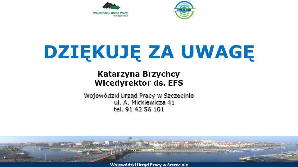 DZIĘKUJĘ ZA UWAGĘ Katarzyna Brzychcy Wicedyrektor ds. EFS Wojewódzki Urząd Pracy w Szczecinie ul. A. Mickiewicza 41 tel. 91 42 56 101