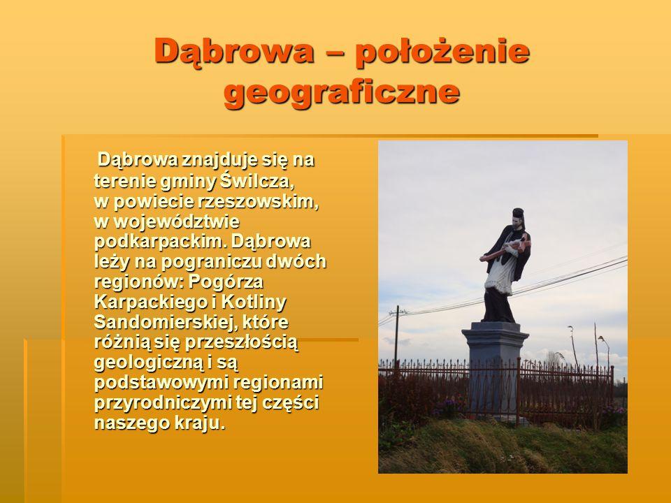 Dąbrowa – położenie geograficzne Dąbrowa znajduje się na terenie gminy Świlcza, w powiecie rzeszowskim, w województwie podkarpackim.