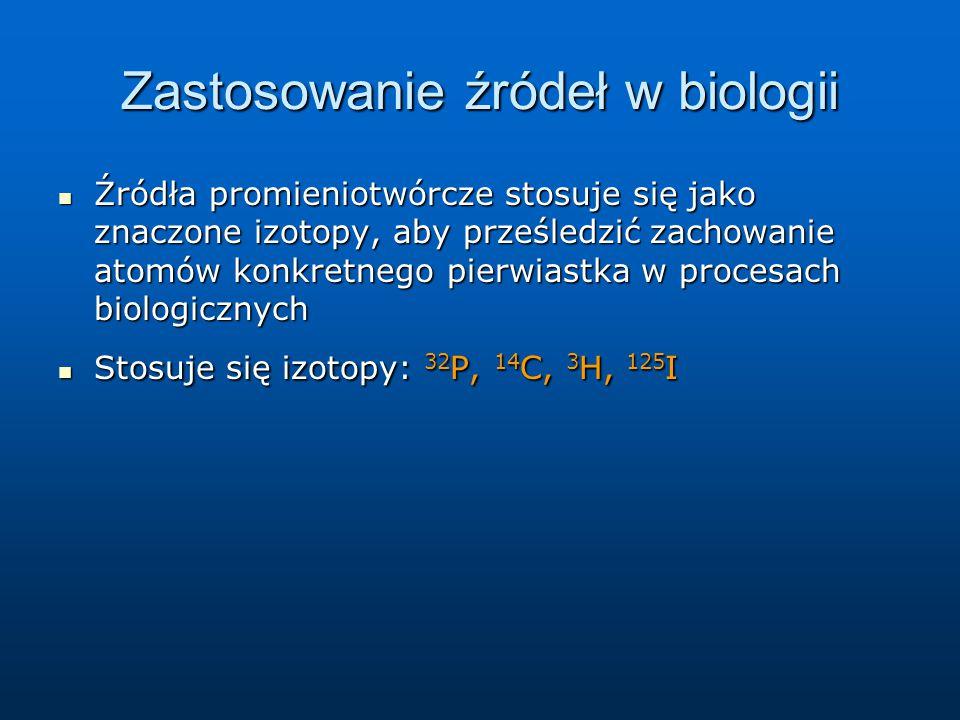 Zastosowanie źródeł w biologii Źródła promieniotwórcze stosuje się jako znaczone izotopy, aby prześledzić zachowanie atomów konkretnego pierwiastka w procesach biologicznych Źródła promieniotwórcze stosuje się jako znaczone izotopy, aby prześledzić zachowanie atomów konkretnego pierwiastka w procesach biologicznych Stosuje się izotopy: 32 P, 14 C, 3 H, 125 I Stosuje się izotopy: 32 P, 14 C, 3 H, 125 I