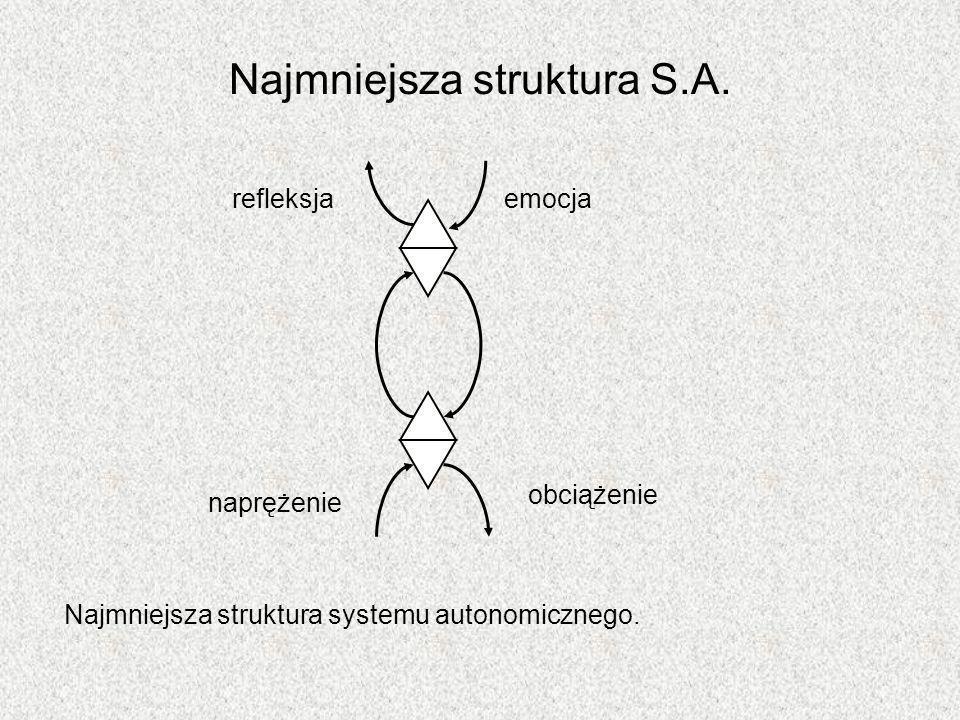 Najmniejsza struktura S.A. Najmniejsza struktura systemu autonomicznego. refleksjaemocja naprężenie obciążenie