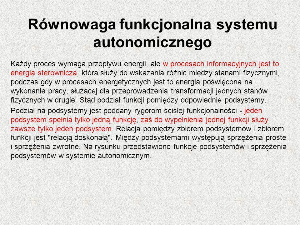Równowaga funkcjonalna systemu autonomicznego Każdy proces wymaga przepływu energii, ale w procesach informacyjnych jest to energia sterownicza, która