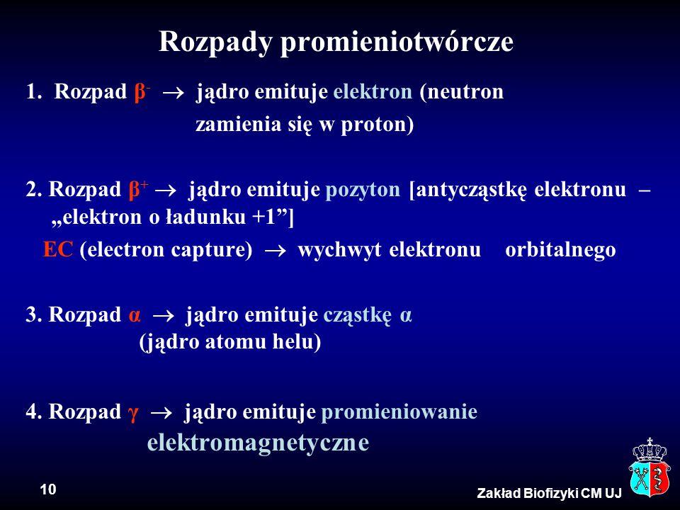 10 Zakład Biofizyki CM UJ Rozpady promieniotwórcze 1. Rozpad β -  jądro emituje elektron (neutron zamienia się w proton) 2. Rozpad β +  jądro emituj