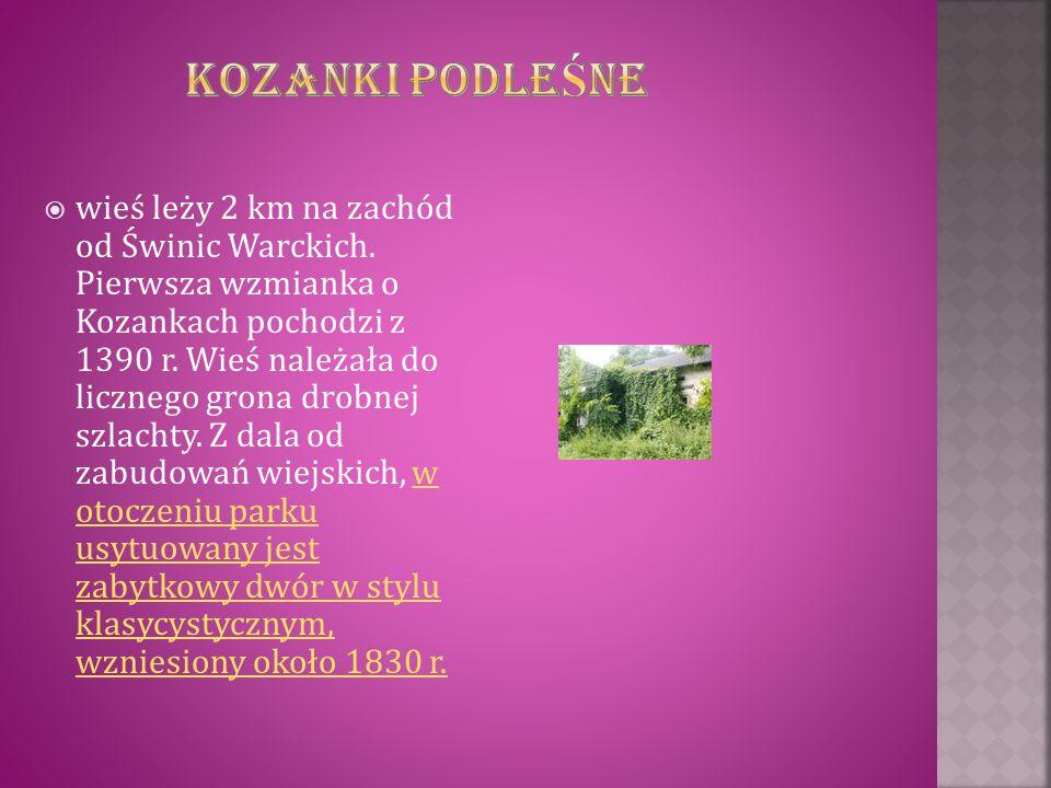  wieś leży 2 km na zachód od Świnic Warckich. Pierwsza wzmianka o Kozankach pochodzi z 1390 r. Wieś należała do licznego grona drobnej szlachty. Z da