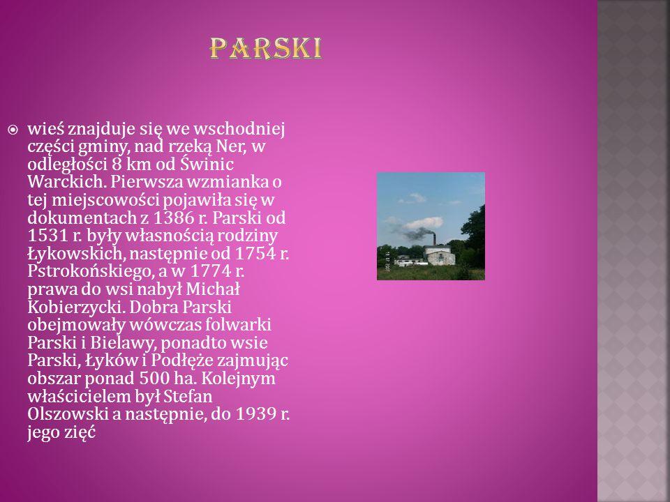  wieś znajduje się we wschodniej części gminy, nad rzeką Ner, w odległości 8 km od Świnic Warckich. Pierwsza wzmianka o tej miejscowości pojawiła się