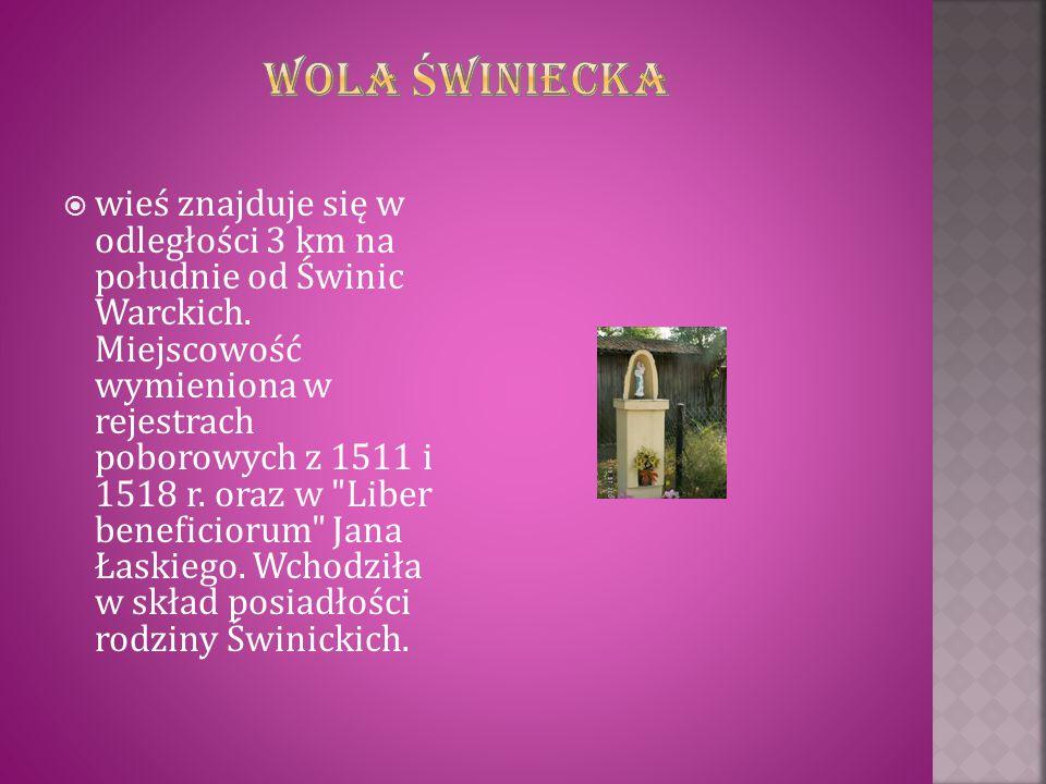  wieś znajduje się w odległości 3 km na południe od Świnic Warckich. Miejscowość wymieniona w rejestrach poborowych z 1511 i 1518 r. oraz w