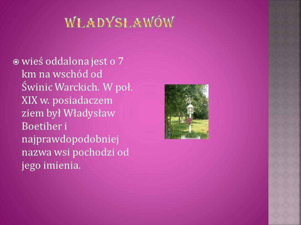  wieś oddalona jest o 7 km na wschód od Świnic Warckich. W poł. XIX w. posiadaczem ziem był Władysław Boetiher i najprawdopodobniej nazwa wsi pochodz