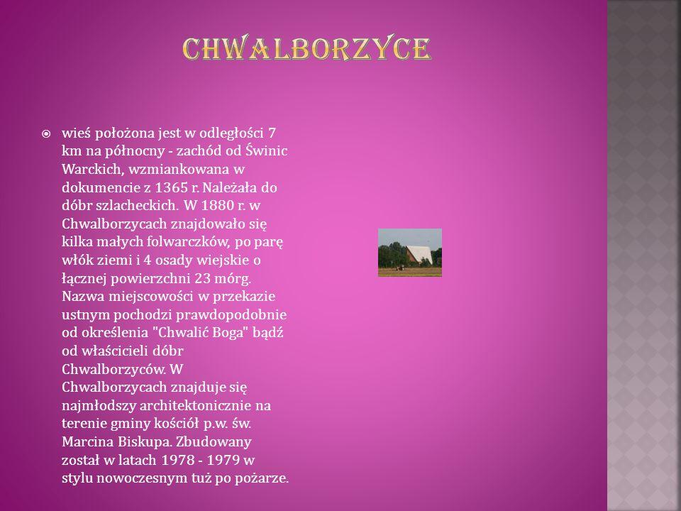  wieś położona jest w odległości 7 km na północny - zachód od Świnic Warckich, wzmiankowana w dokumencie z 1365 r. Należała do dóbr szlacheckich. W 1