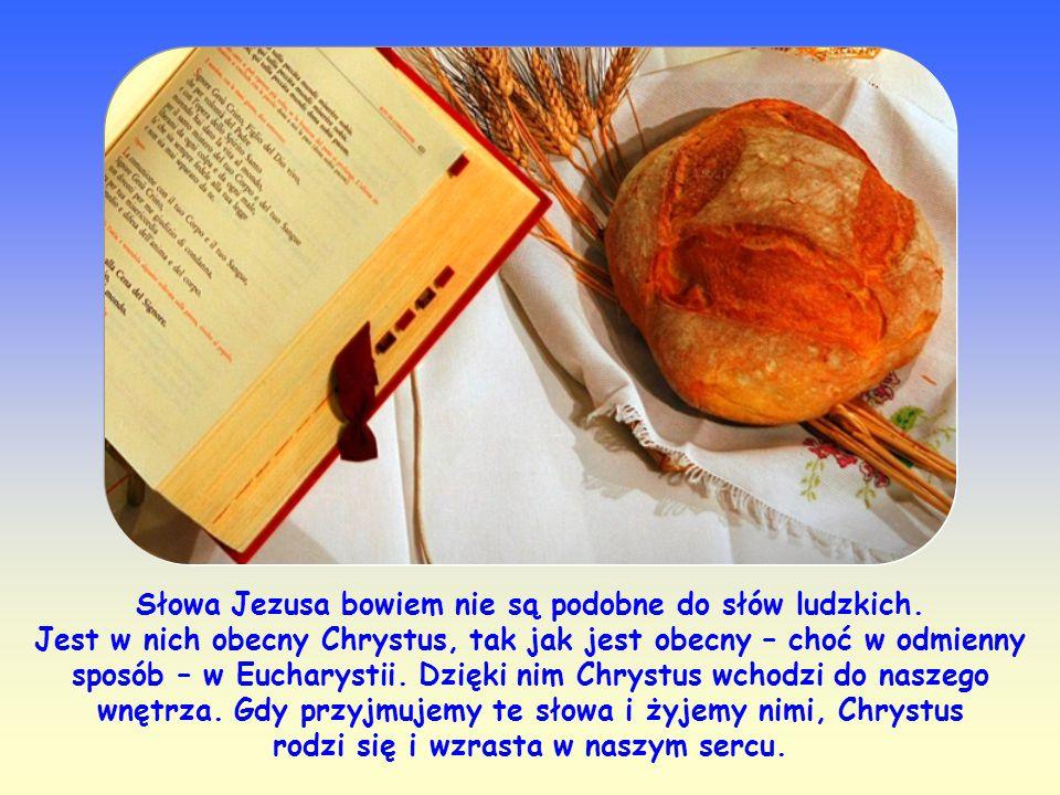 Jezus wskazuje nam drogę, na której możemy stać się ludźmi czystego serca: jest nią Jego Słowo. To Słowo, które uczniowie usłyszeli i do którego przyl