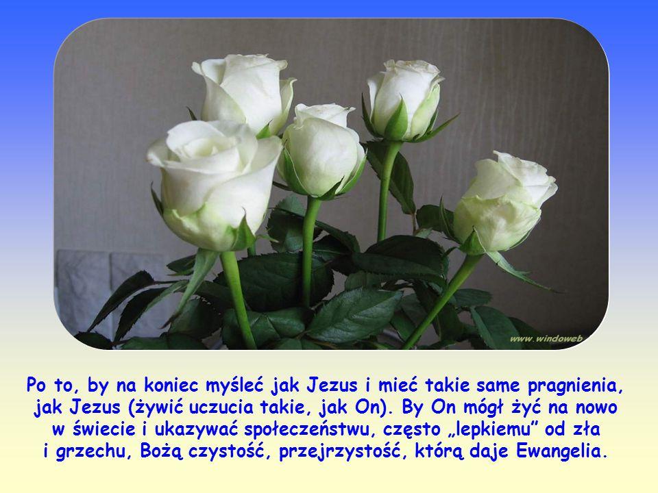 Jak więc powinniśmy żyć, byśmy i my zasłużyli na pochwałę Jezusa? Wcielając w życie każde słowo Boga, karmiąc się nim, chwila po chwili, czyniąc nasze
