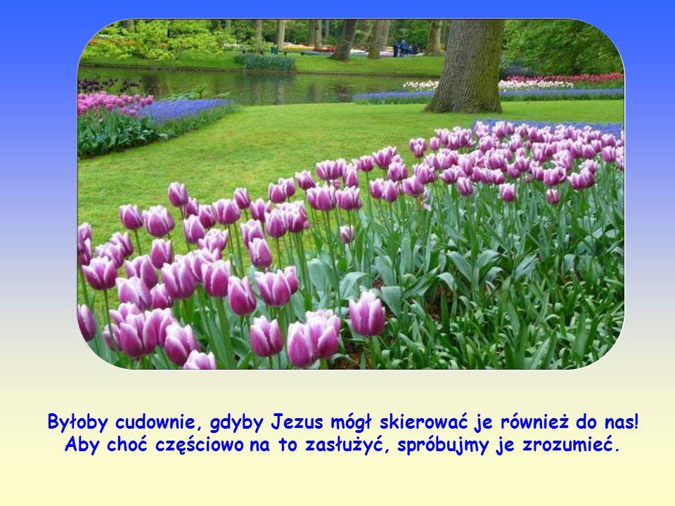 Słowa Jezusa bowiem nie są podobne do słów ludzkich.
