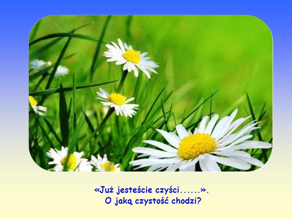 Słowo Jezusa było też porównane do ziarna, które pada w duszę wierzącego.