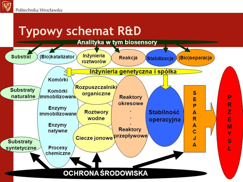 Typowy schemat R&D Substrat(Bio)katalizator Inżynieria roztworów Reakcja Stabilizacja (Bio)separacja Substraty naturalne Substraty syntetyczne Komórki
