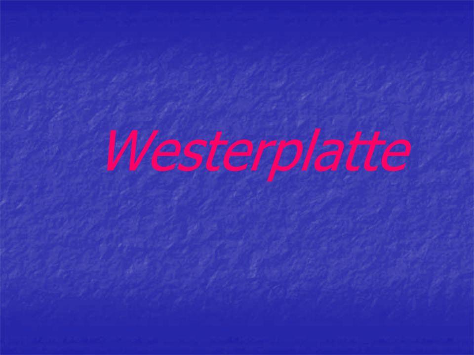 Plan prezentacji: Co to jest Westerplatte .