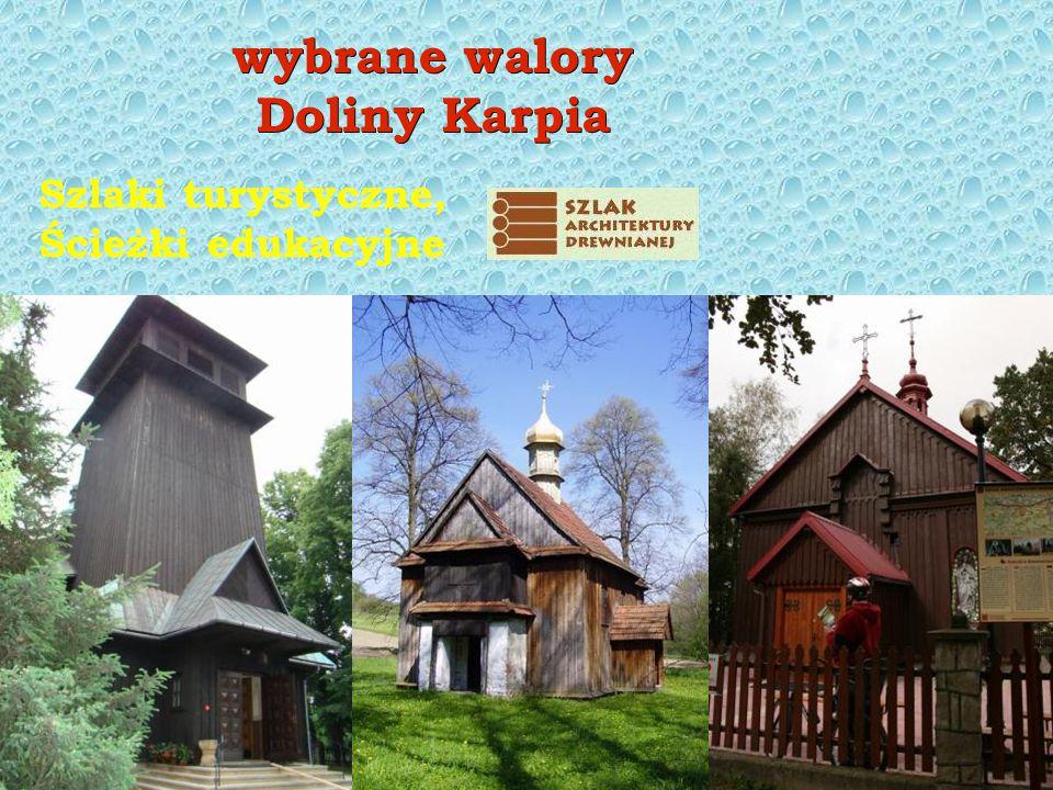 www.dolinakarpia.org i ptaki...