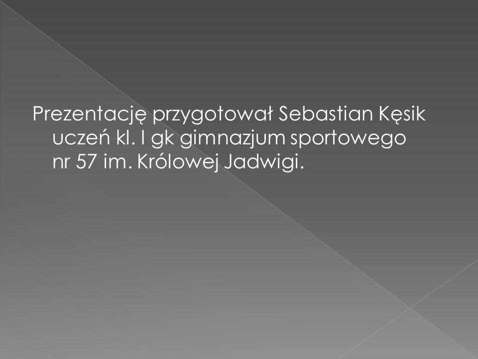 Prezentację przygotował Sebastian Kęsik uczeń kl. I gk gimnazjum sportowego nr 57 im.