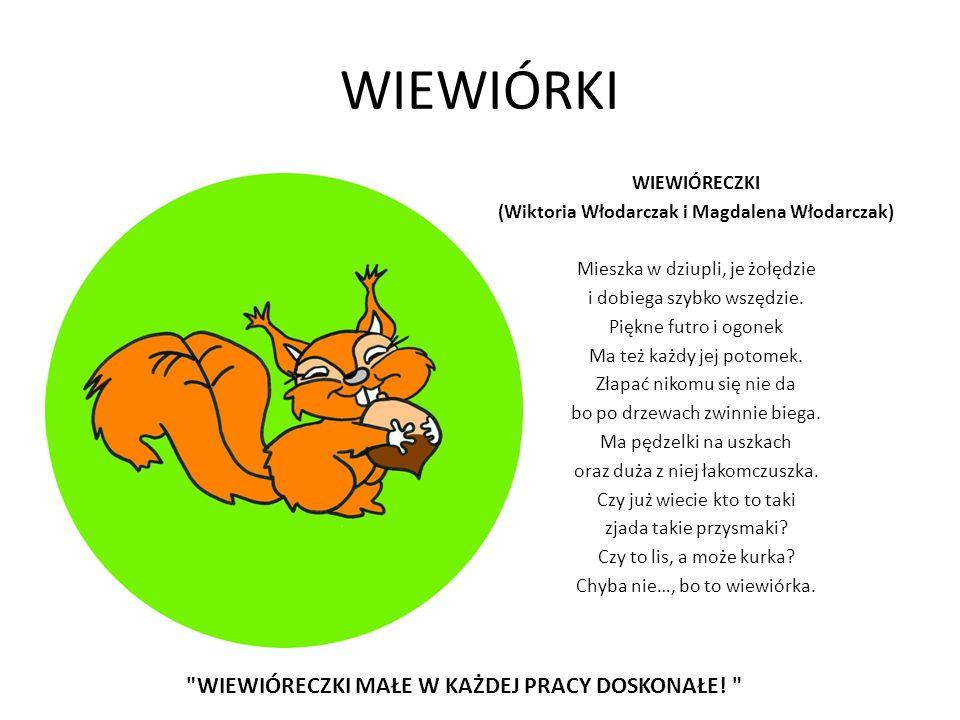 WIEWIÓRKI WIEWIÓRECZKI (Wiktoria Włodarczak i Magdalena Włodarczak) Mieszka w dziupli, je żołędzie i dobiega szybko wszędzie. Piękne futro i ogonek Ma