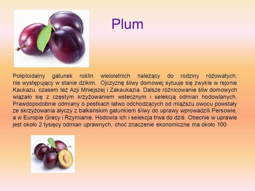 Plum Poliploidalny gatunek roślin wieloletnich należący do rodziny różowatych, nie występujący w stanie dzikim. Ojczyznę śliwy domowej sytuuje się zwy