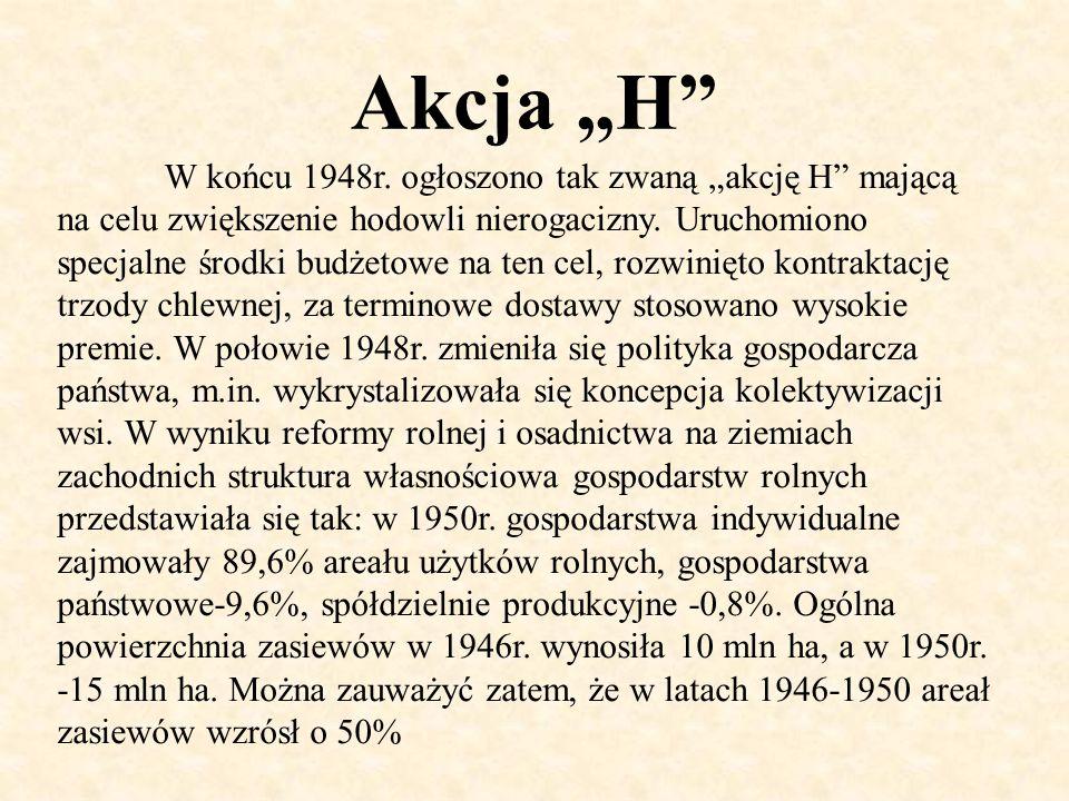 """Akcja """"H"""" W końcu 1948r. ogłoszono tak zwaną """"akcję H"""" mającą na celu zwiększenie hodowli nierogacizny. Uruchomiono specjalne środki budżetowe na ten"""