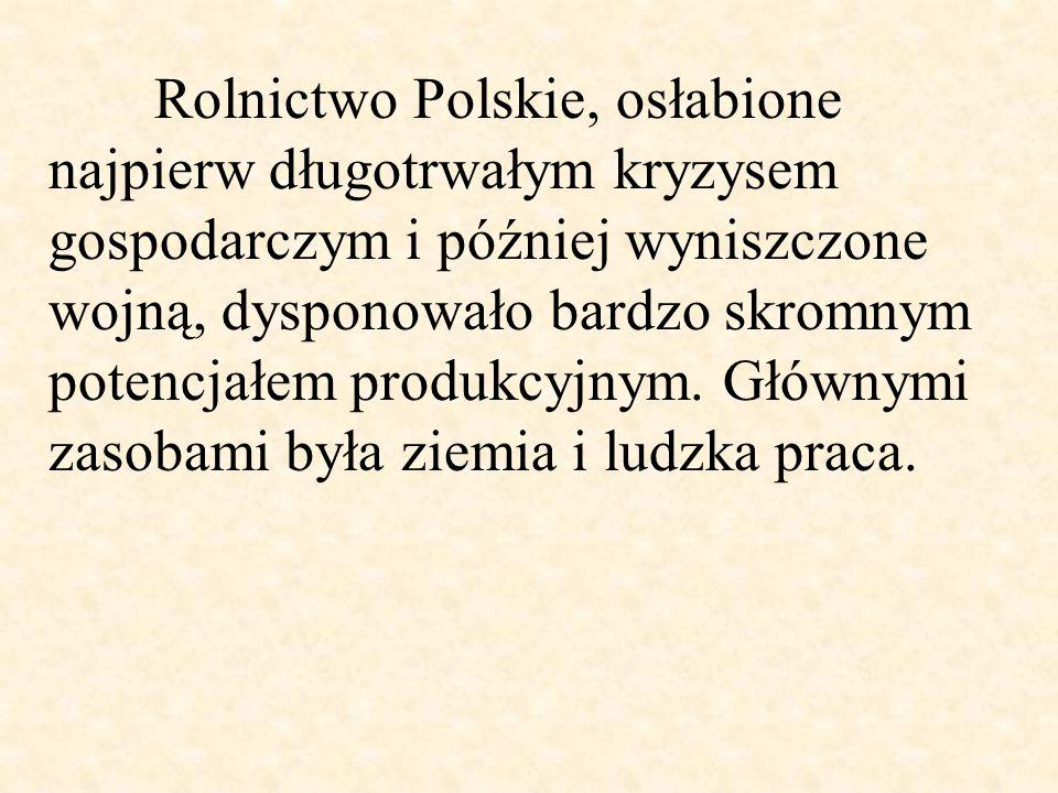 Rolnictwo Polskie, osłabione najpierw długotrwałym kryzysem gospodarczym i później wyniszczone wojną, dysponowało bardzo skromnym potencjałem produkcy