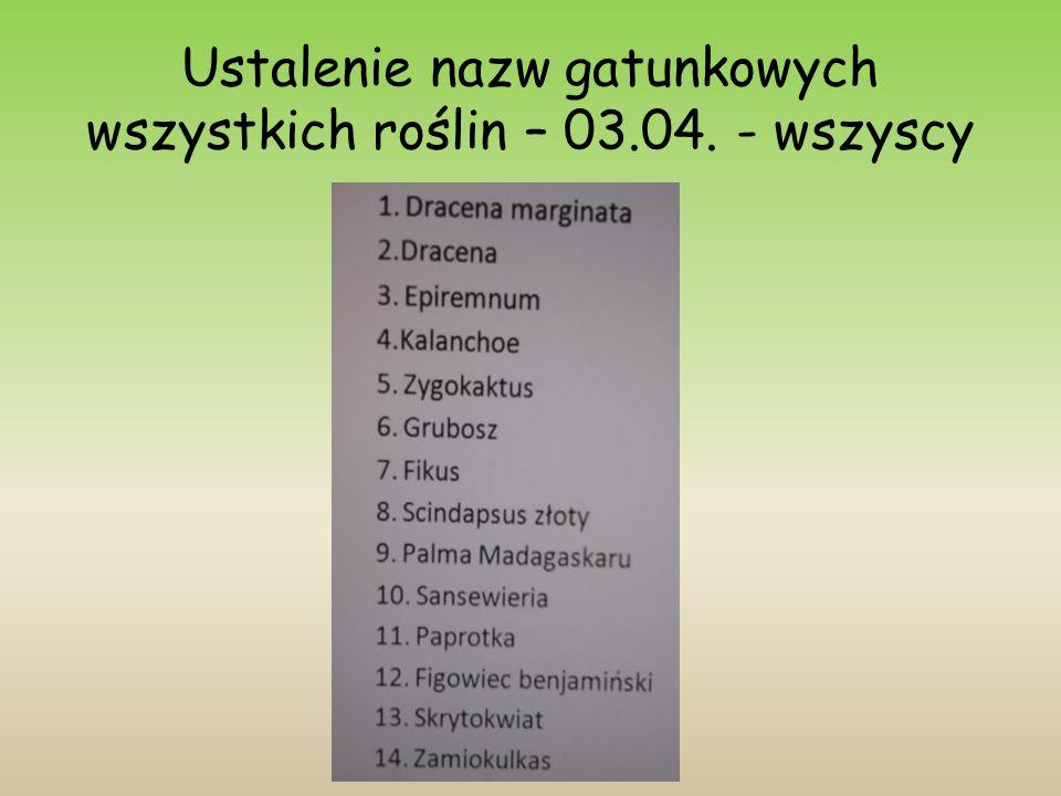 Ustalenie nazw gatunkowych wszystkich roślin – 03.04. - wszyscy