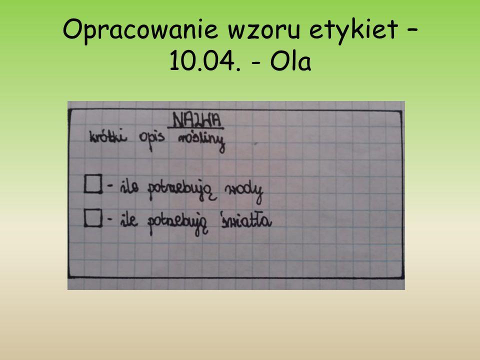 Opracowanie wzoru etykiet – 10.04. - Ola