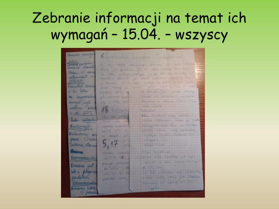 Zebranie informacji na temat ich wymagań – 15.04. – wszyscy