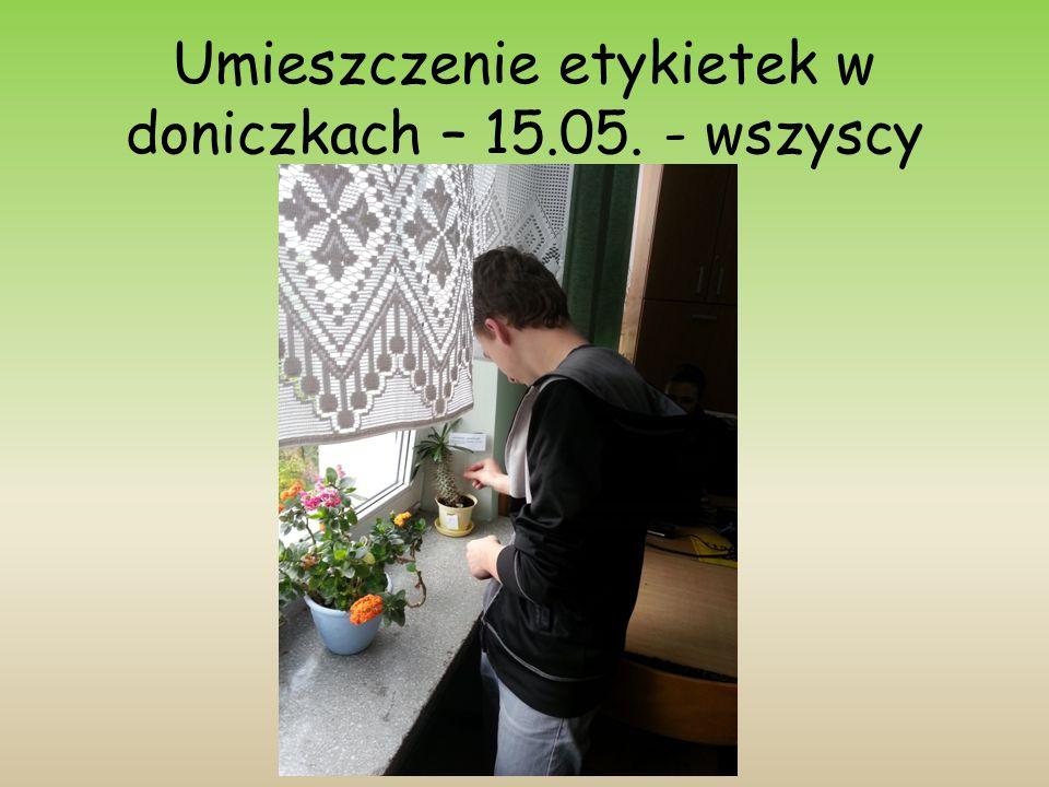 Umieszczenie etykietek w doniczkach – 15.05. - wszyscy