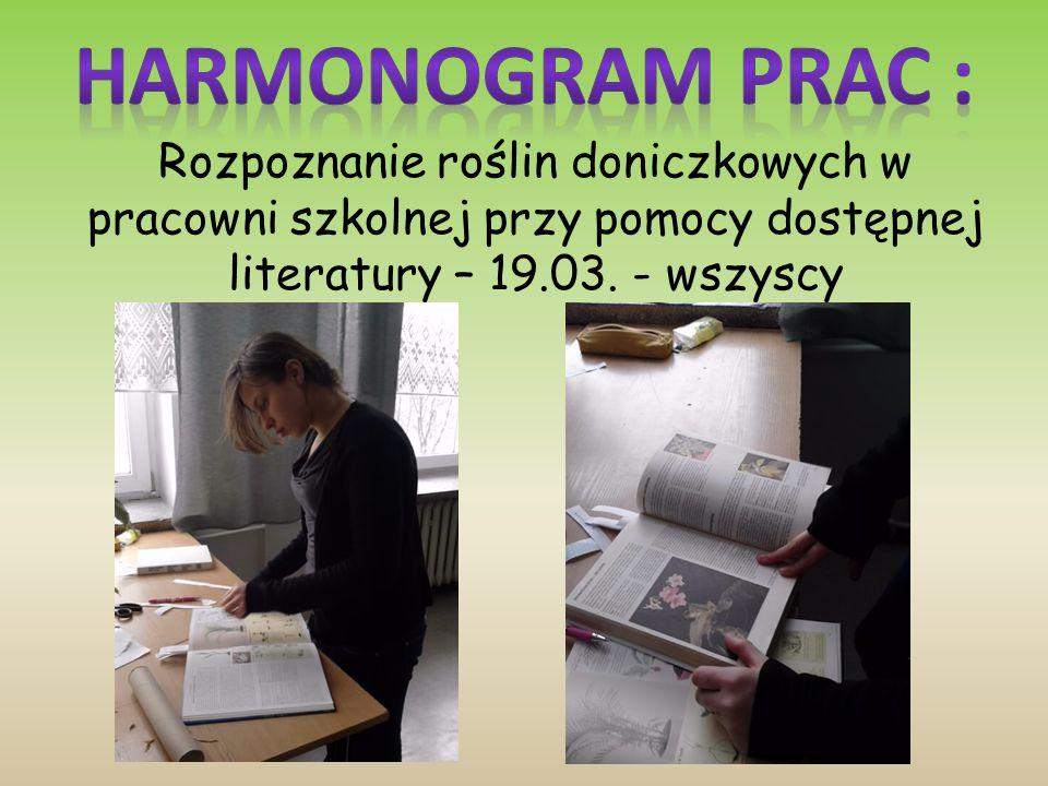 Rozpoznanie roślin doniczkowych w pracowni szkolnej przy pomocy dostępnej literatury – 19.03.