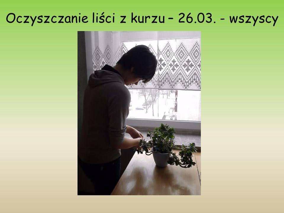 Oczyszczanie liści z kurzu – 26.03. - wszyscy