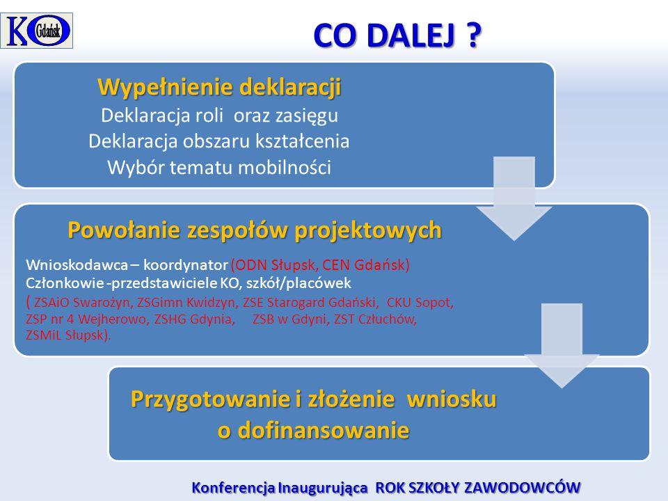 CO DALEJ ? CO DALEJ ? Wypełnienie deklaracji Deklaracja roli oraz zasięgu Deklaracja obszaru kształcenia Wybór tematu mobilności Powołanie zespołów pr