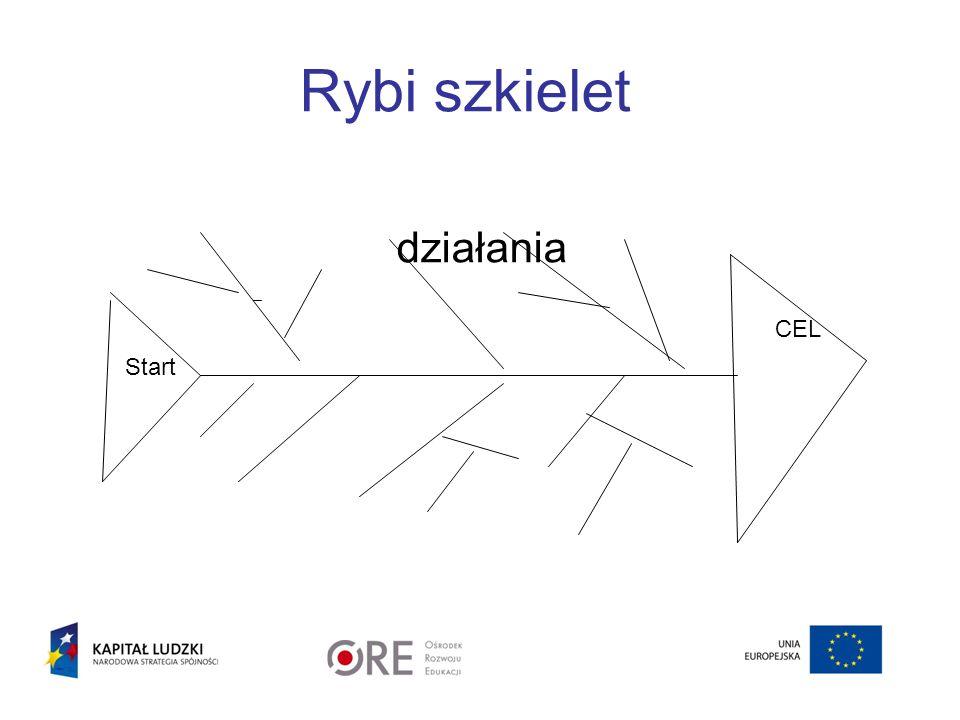 Rybi szkielet działania Start CEL