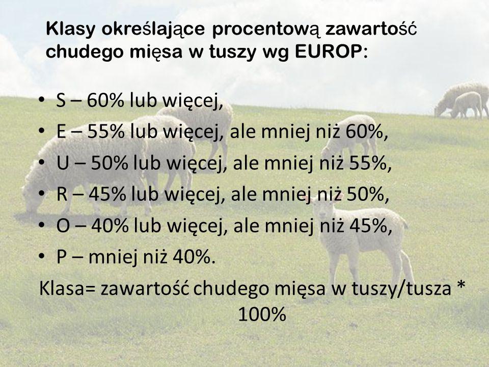 S – 60% lub więcej, E – 55% lub więcej, ale mniej niż 60%, U – 50% lub więcej, ale mniej niż 55%, R – 45% lub więcej, ale mniej niż 50%, O – 40% lub w