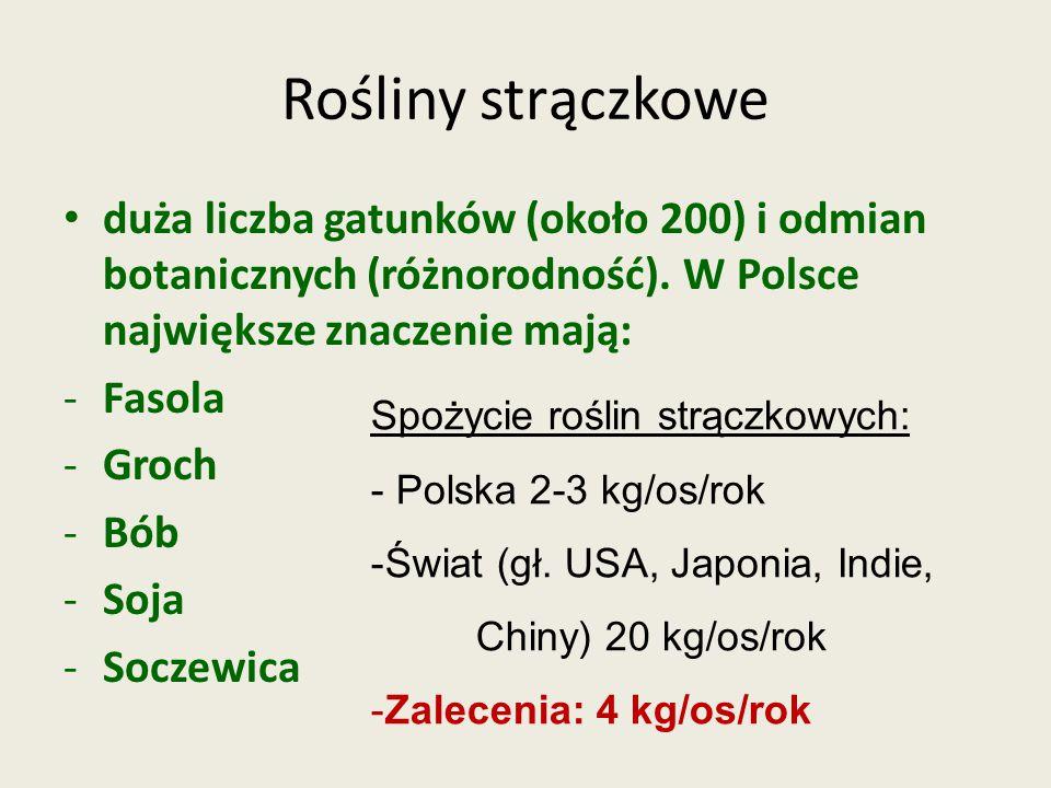 Rośliny strączkowe duża liczba gatunków (około 200) i odmian botanicznych (różnorodność). W Polsce największe znaczenie mają: -Fasola -Groch -Bób -Soj