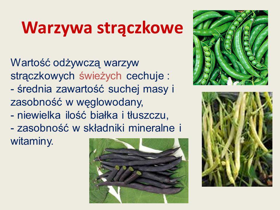 Warzywa strączkowe Wartość odżywczą warzyw strączkowych świeżych cechuje : - średnia zawartość suchej masy i zasobność w węglowodany, - niewielka iloś