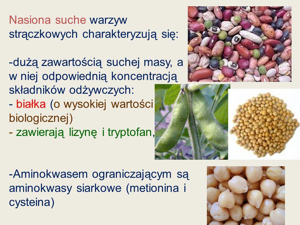 Nasiona suche warzyw strączkowych charakteryzują się: -dużą zawartością suchej masy, a w niej odpowiednią koncentracją składników odżywczych: - białka