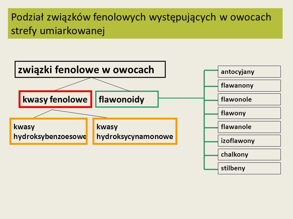 Podział związków fenolowych występujących w owocach strefy umiarkowanej związki fenolowe w owocach kwasy fenolowe flawonoidy kwasy hydroksybenzoesowe