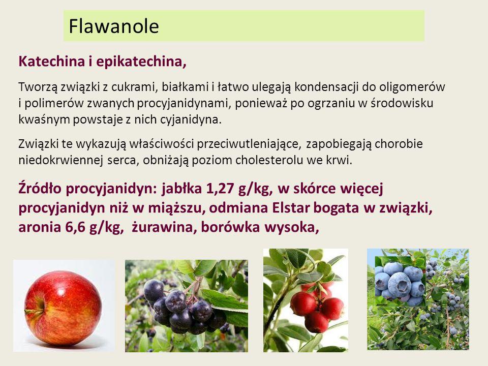 Flawanole Katechina i epikatechina, Tworzą związki z cukrami, białkami i łatwo ulegają kondensacji do oligomerów i polimerów zwanych procyjanidynami,