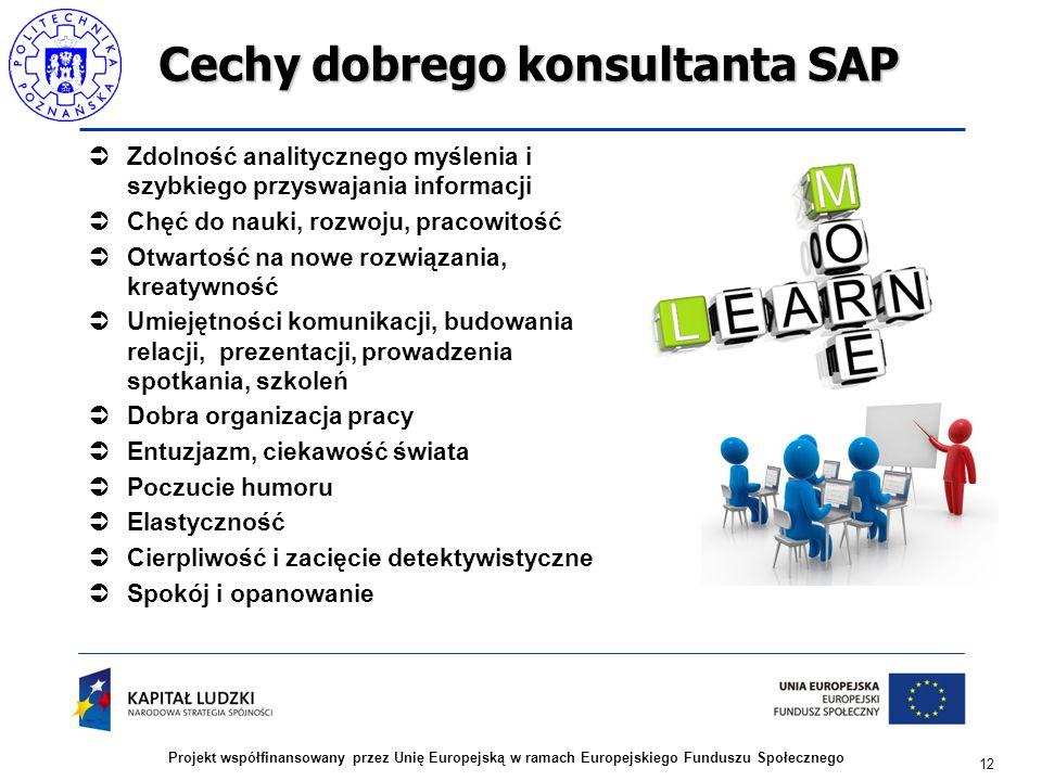 12 Projekt współfinansowany przez Unię Europejską w ramach Europejskiego Funduszu Społecznego Cechy dobrego konsultanta SAP  Zdolność analitycznego m