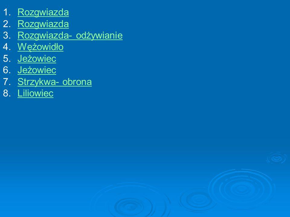 1.RozgwiazdaRozgwiazda 2.RozgwiazdaRozgwiazda 3.Rozgwiazda- odżywianieRozgwiazda- odżywianie 4.WężowidłoWężowidło 5.JeżowiecJeżowiec 6.JeżowiecJeżowiec 7.Strzykwa- obronaStrzykwa- obrona 8.LiliowiecLiliowiec